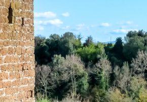 Castel d'Asso - Il Meleto